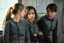 Tris, Christina und Will