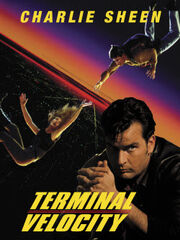 DHS- Terminal Velocity alternate poster