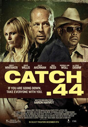 DHS- Catch .44 movie poster