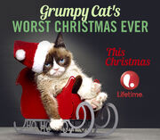 DHS- Grumpy Cat movie promo ad poster
