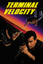 DHS- Terminal Velocity poster