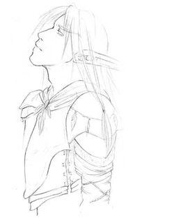 Aricarion Zeichnung