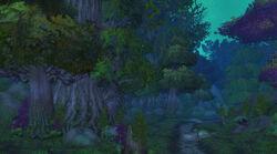 Nachtweisenwald Cata