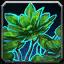 Inv herbalism 70 dreamleaf