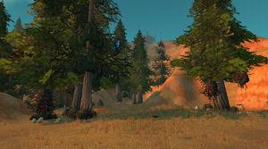Trockene Hügel