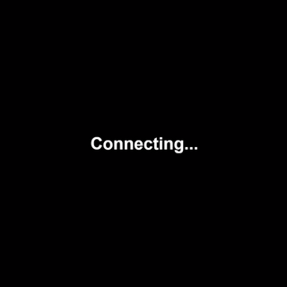 Connecting screen (Appears after updating for 10 minutes or when the game has connection problems).
