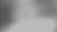 Vlcsnap-2018-01-26-16h09m34s113