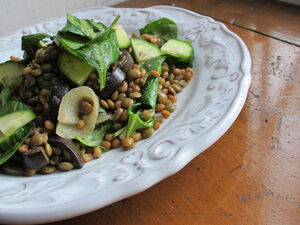 Lentil wheatberry 1
