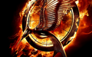 Catching fire bild
