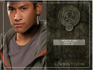 District 10 tribute boy