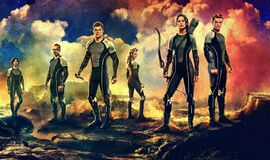Catching Fire Tribute