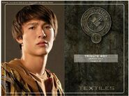 District 8 tribute boy