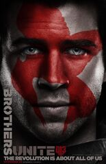 Mockingjay Poster Gale