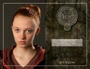 042247052-the-hunger-games-die-tribute-von-panem