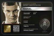 Marvel-DIP