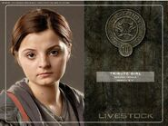 District 10 tribute girl-1
