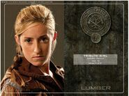 District 7 tribute girl