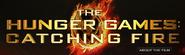Logo catchingfire
