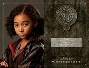 042247043-the-hunger-games-die-tribute-von-panem