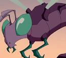 V-Moth