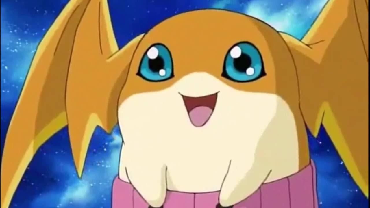 Patamon Digimon Frontier Wiki Fandom