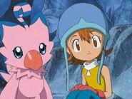 Sora y Piyomon Adventure