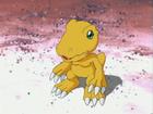 Agumon avatar 02