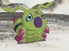 Wormmon avatar