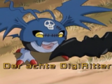 Der achte Digiritter