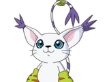 Gatomon (Adventure)