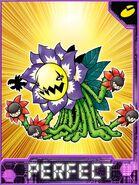 Blossomon Collectors Perfect Card