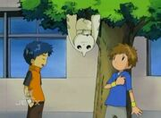Tamers Ep08-2