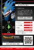XV-mon 2-005 B (DJ)