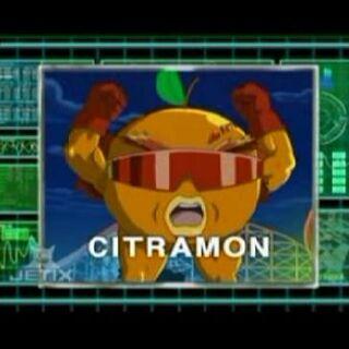 <b>Citramon</b>