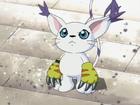 Tailmon avatar 02