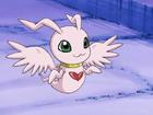 MarinAngemon avatar