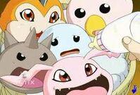 Digimon bebes2