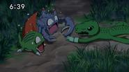 Nene (Alligator) t