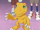 Agumon avatar