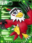 Hawkmon re collectors card
