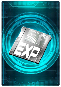 Experience Floppy Silver 5-765 (DCr)