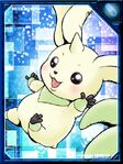 Terriermon re collectors card