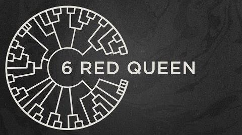 Area 11 - Red Queen -Official Lyric Video-