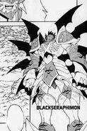 Blackseraphidfm