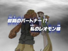 DT21 title jp