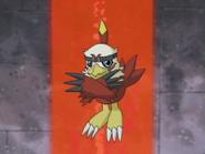 Hawk02