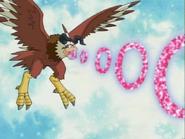 Aquila02