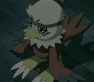 Hawkicdd