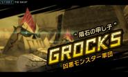 DHB-grocks