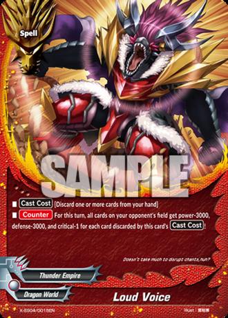 X-SS04-0015EN (Sample)